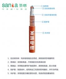BTTRZ铜护套防火电缆